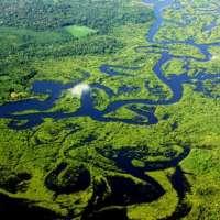 Conceitos básicos sobre o ambiente