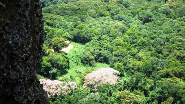 Vista de um espaço conservado na Serra