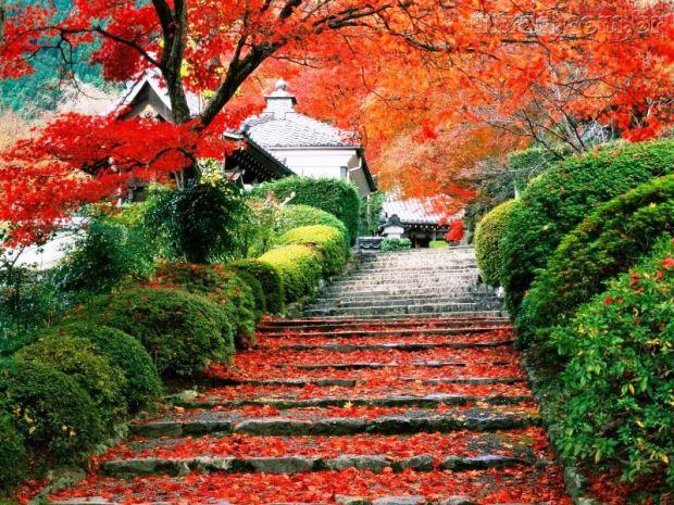 Escadaria em Kyoto, Japão
