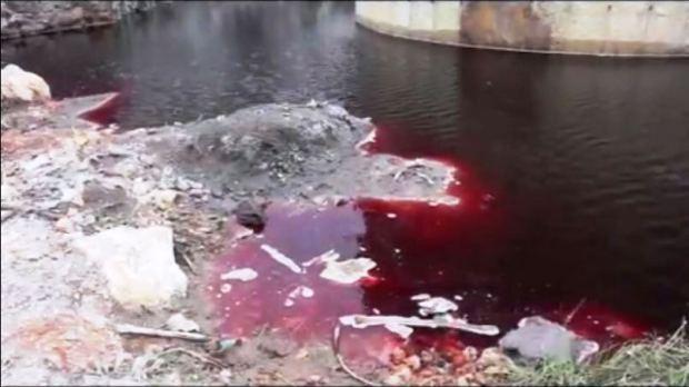 A brutal contaminação das águas