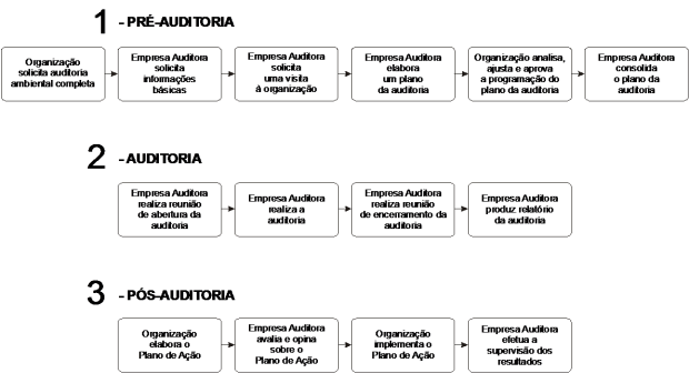 Fases do processo da auditoria de PCA