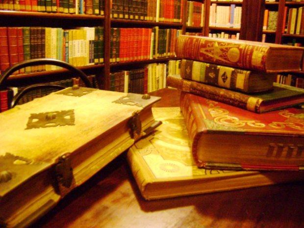 Meus livros, os tesouros da biblioteca