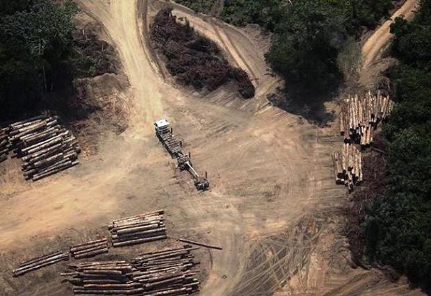 Na falta de outra imagem, veja o crescente desmatamento da Amazônia