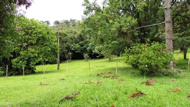 Vista do terreno na Fazenda Boa Vista, Bocaina de Minas