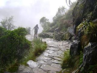 A trilha