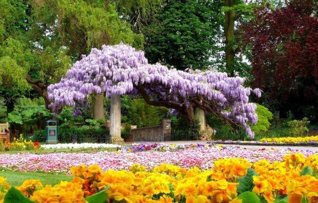 Gestão de Jardim